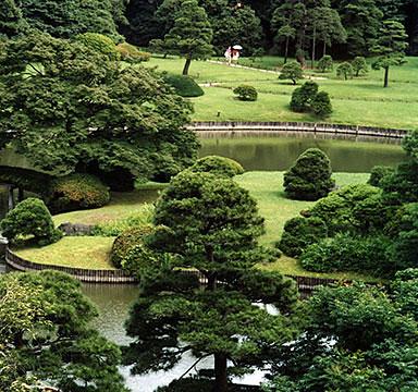 The Zen of composing a landscape.